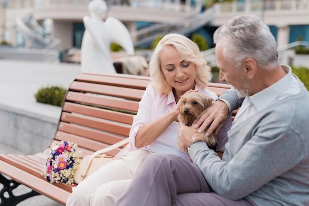 Um casal de idosos está andando na praça com seu cachorro. Foto Premium