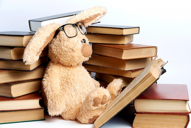 Um coelho macio do brinquedo nos vidros senta-se nas pilhas dos livros e lê-se um livro. Foto Premium