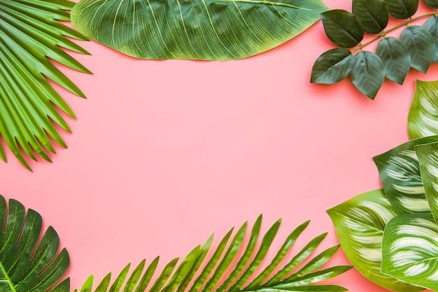 Um espaço em branco para escrever o texto feito com diferentes tipos de folhas verdes escuras Foto gratuita