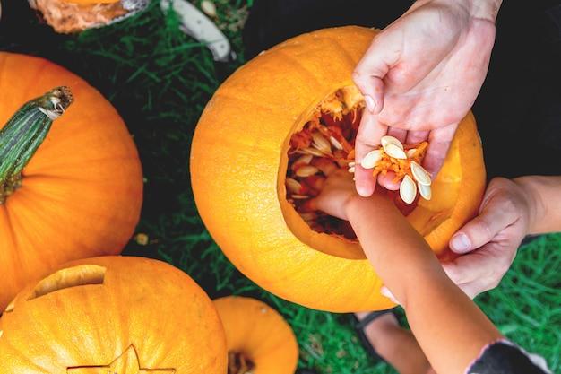 Um fim acima da mão da filha e do pai que puxa sementes de uma abóbora. Foto Premium