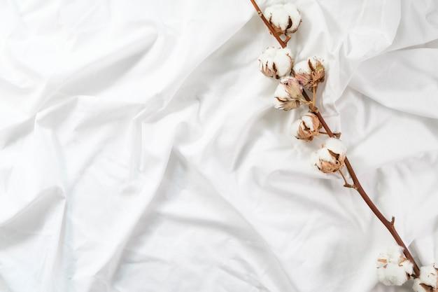 Um galho de algodão está sobre um pano de algodão branco. outono apartamento aconchegante. minimalismo. flor de algodão. Foto Premium