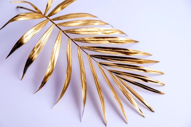 Um galho de uma palmeira dourada sobre um fundo branco. Foto Premium