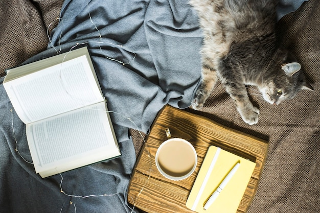 Um gato de estimação fofo cinzento em um cobertor ao lado de uma xícara de café e um livro Foto Premium