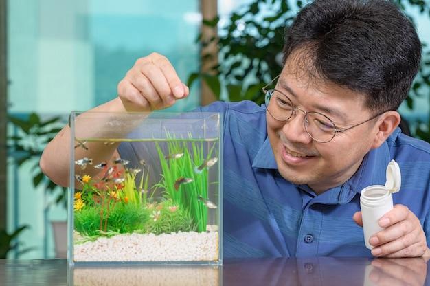 Um homem asiático de meia-idade que alimenta o guppy que cria em um pequeno aquário Foto Premium