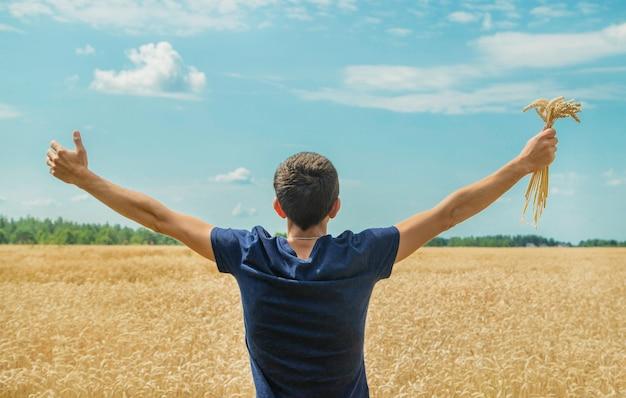 Um homem com espigas de trigo nas mãos. Foto Premium