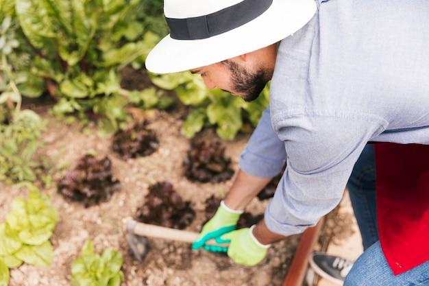 Um, macho, jardineiro, cavando, a, solo, em, a, jardim vegetal Foto gratuita