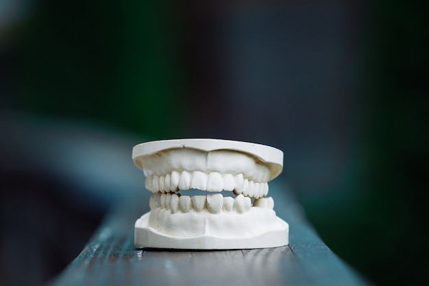 Um modelo de plástico da mandíbula para próteses em cima da mesa Foto Premium