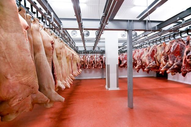 Um monte de carne de porco crua e bovina crua e picada pendurada e arrumada e processada depositada em uma geladeira, na fábrica. Foto Premium