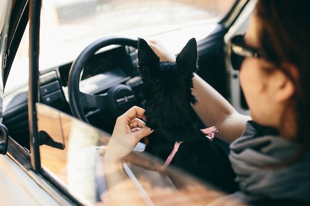 Um, mulher, com, um, cão, em, dela, car Foto Premium