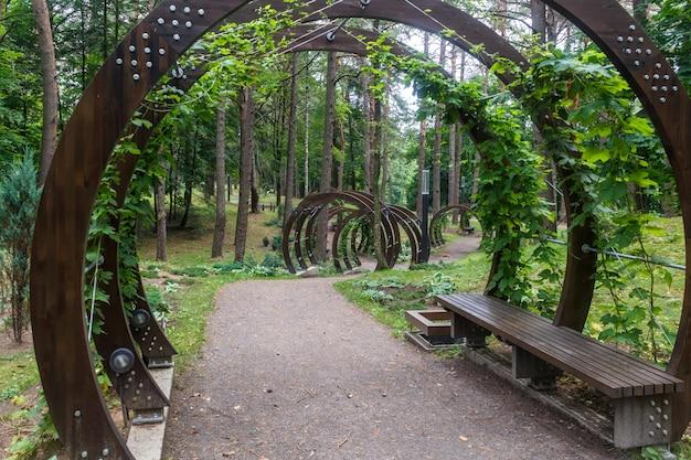 Um parque florestal com grandes árvores e bancos e arcos criativos. Foto Premium