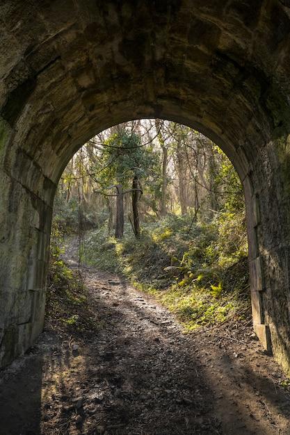 Um túnel na costa entre deba e zumaia. país basco Foto Premium