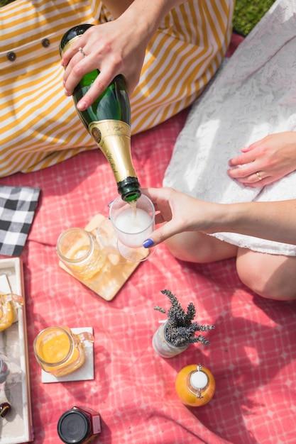 Um, visão aérea, de, mulher, cerveja derramando, ligado, vidro, ligado, piquenique Foto gratuita