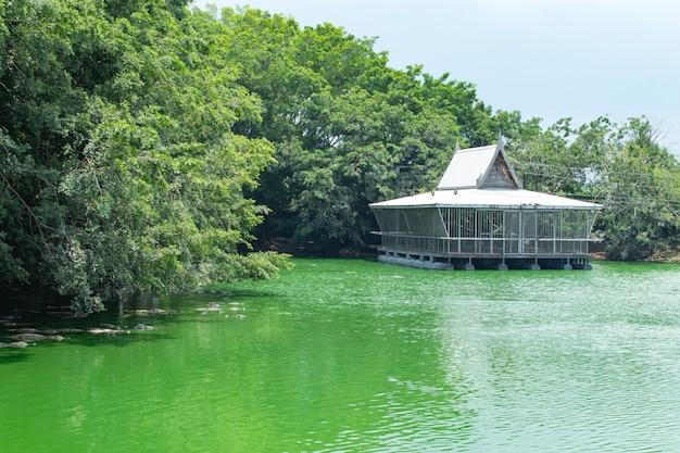 Uma balsa flutuante na fazenda de crocodilos. Foto Premium