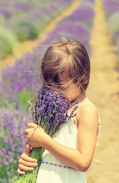 Uma criança em um campo de floração de lavanda. Foto Premium