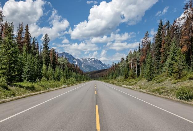 Uma estrada reta pelo vale da morte, califórnia, rodovia ao pôr do sol Foto Premium
