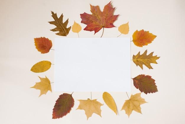 Uma folha de papel branco com um espaço de cópia para anotações Foto Premium