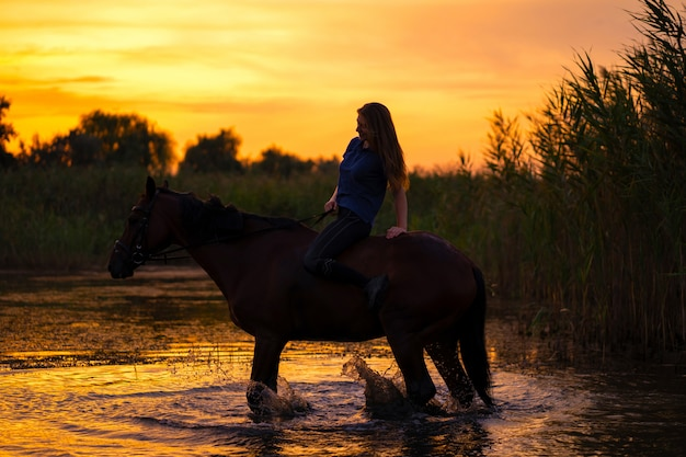 Uma garota esbelta a cavalo está ao pôr do sol. um cavalo está parado em um lago. cuide e ande com o cavalo. força e beleza Foto Premium