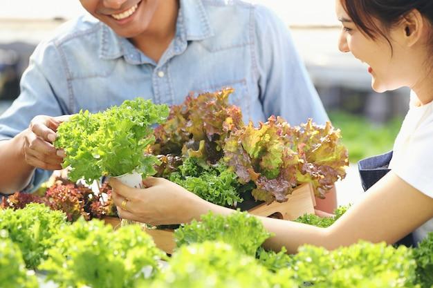Uma jovem mulher está colhendo legumes de uma fazenda hidropônica, com um jovem ajudando. ambos são felizes. Foto Premium