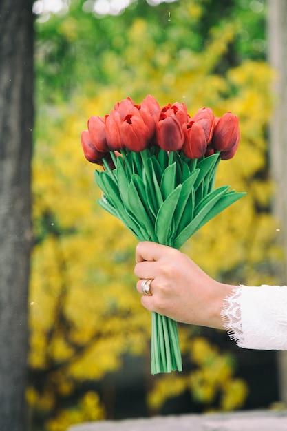 Uma mão de mulher segurando um buquê de tulipas vermelhas. Foto gratuita