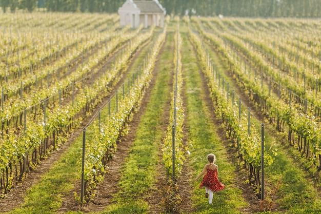 Uma menina corre entre linhas de uvas Foto gratuita