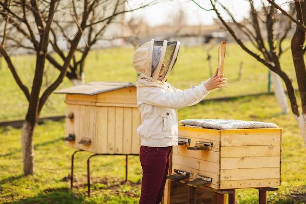 Uma menina jovem apicultor está trabalhando com abelhas e inspecionando colméia após inverno Foto Premium