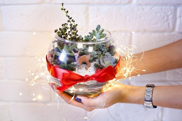 Uma menina segura um florariumov Foto Premium