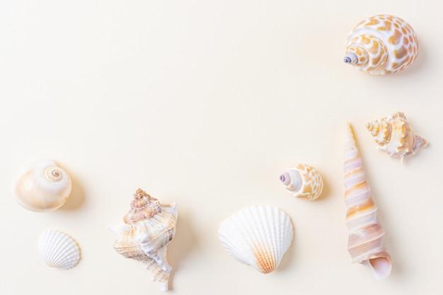 Uma variedade de conchas do mar em bege. Foto Premium
