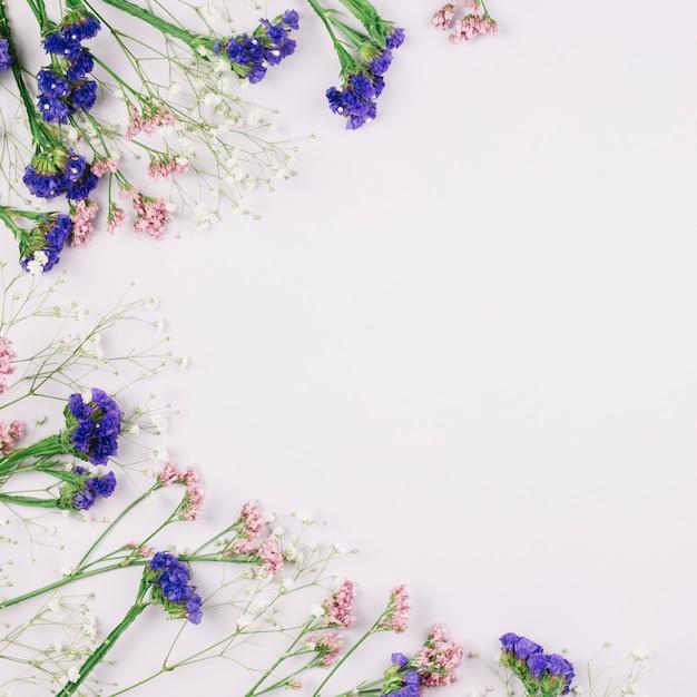 Uma visão aérea de belas flores frescas limonium e gypsophila isoladas no fundo branco, com espaço de cópia para o texto Foto gratuita