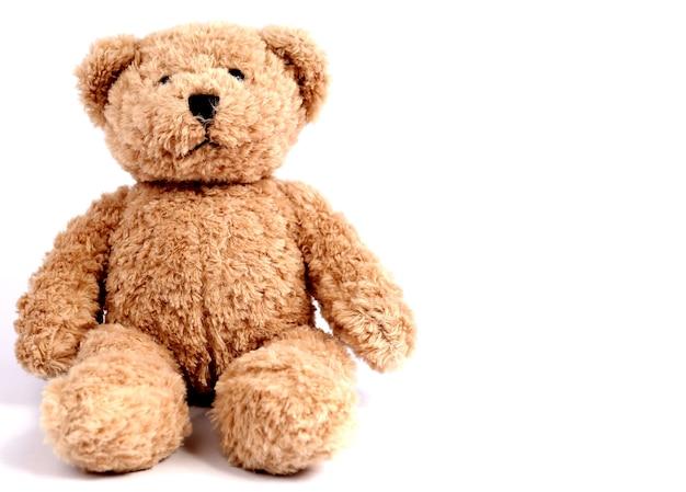 Urso de pelúcia com pano de fundo branco. Foto Premium