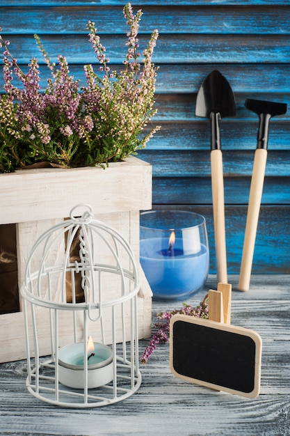 Urze rosa, vela azul acesa e ferramentas de jardinagem Foto Premium