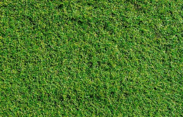 Uso artificial da grama da decoração verde para o fundo do esporte. Foto Premium