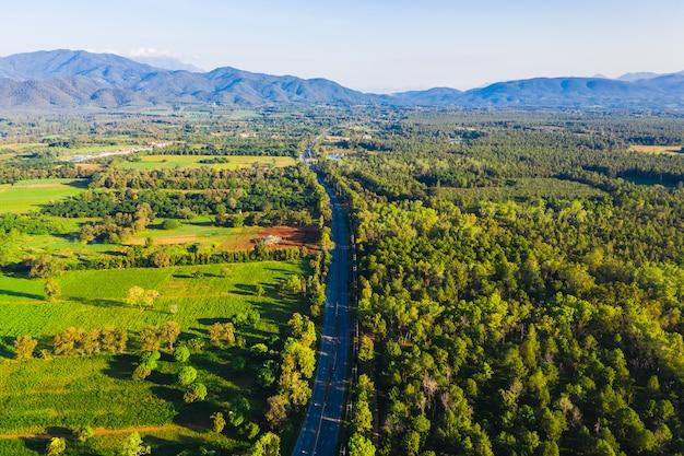 Utopia da floresta do pinho da vista superior aérea e área agrícola com a estrada longa que conecta a cidade em chiang mai tailândia no tempo da manhã Foto Premium