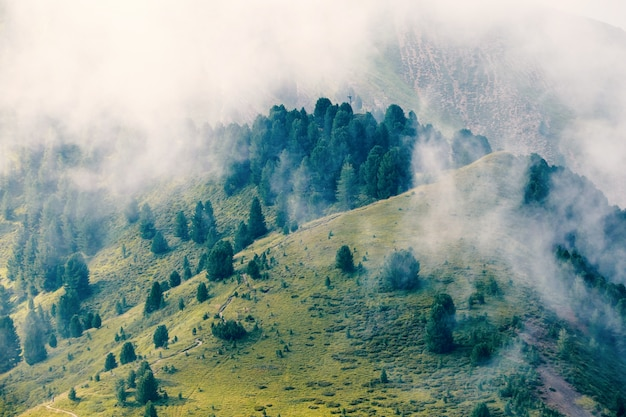 Vale das montanhas val gardena Foto Premium