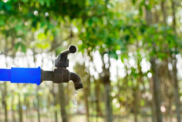 Válvula de água no fundo da natureza verde, fechar a torneira da válvula com desfocar o fundo da árvore verde Foto Premium