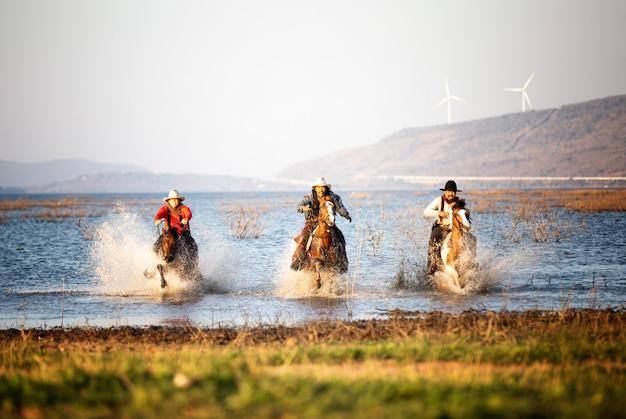 Vaqueiro, montando, cavalos, em, a, campo Foto Premium