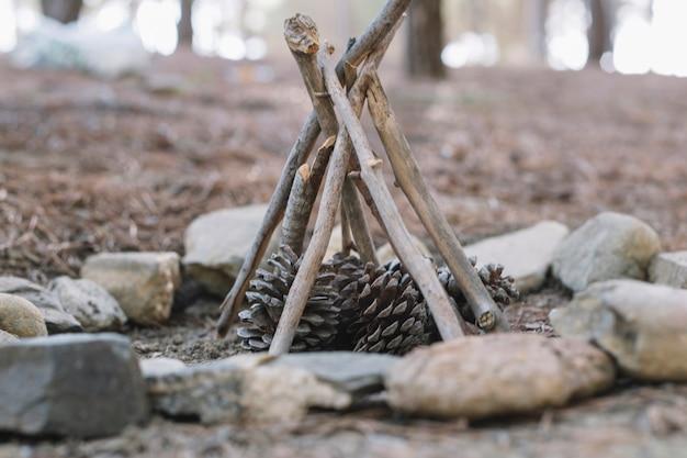 Varas e cones para fogueira Foto gratuita