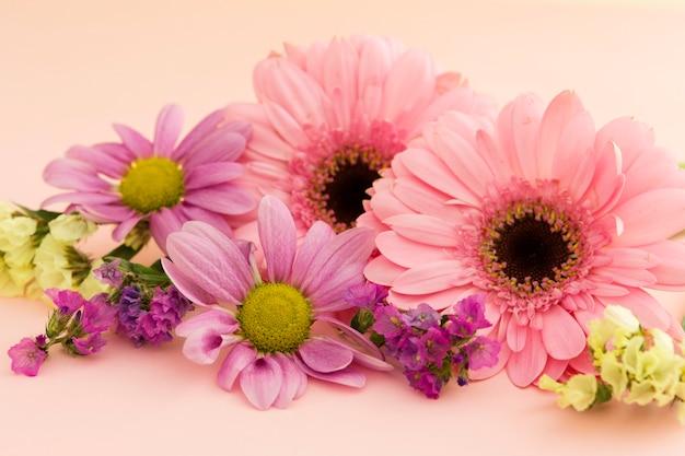 Variedade com flores coloridas da primavera Foto gratuita