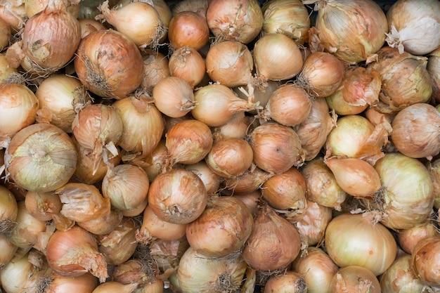 Variedade de cebolas no mercado Foto gratuita