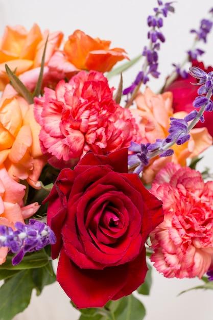 Variedade de close-up de rosas fofos Foto gratuita