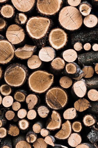 Variedade de fundo de troncos de árvore de madeira cortada Foto gratuita