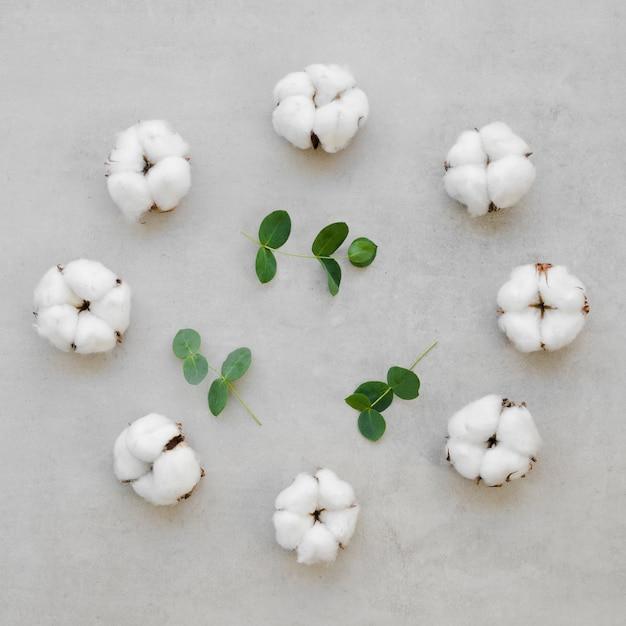 Variedade de vista superior com flores de algodão Foto gratuita