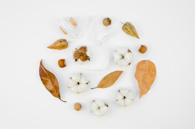 Variedade plana de flores de algodão leigo Foto gratuita