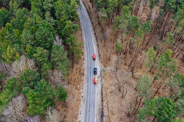 Vários carros com caiaques no rack de teto dirigindo na estrada entre árvores Foto gratuita