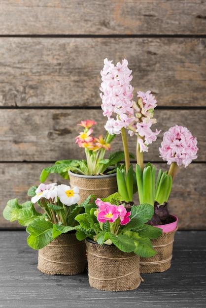 Vasos de flores na mesa Foto gratuita