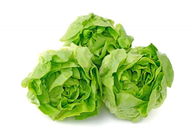 Vegetal de alface manteiga verde ou cabeça de manteiga isolada na parede branca Foto Premium