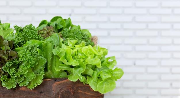 Vegetal verde na caixa de madeira Foto Premium