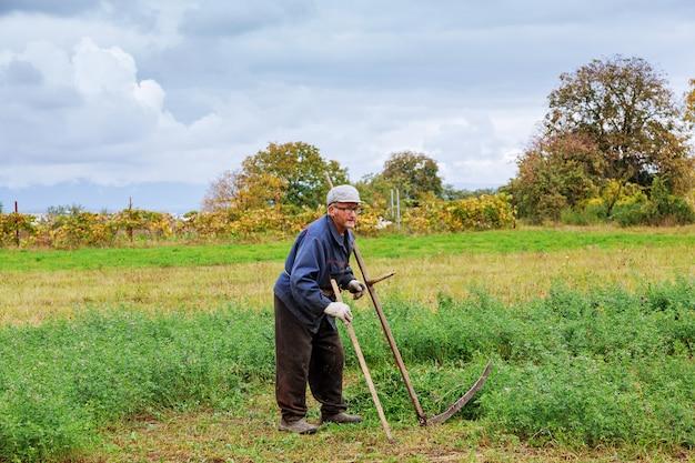 Velho cortando grama com foice | Foto Premium