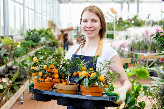 Vendedor de estufa de mercado de planta jovem ruiva oferecendo tangerina Foto Premium