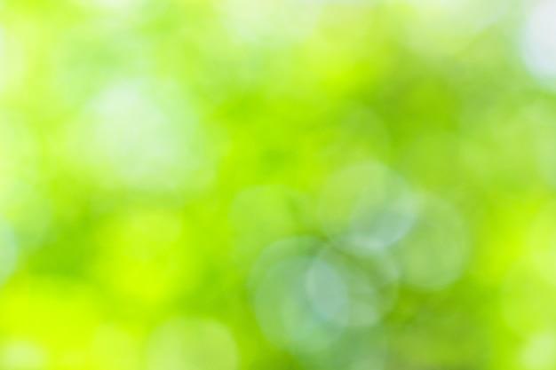 Verão natural amarelo-verde boke como pano de fundo Foto Premium