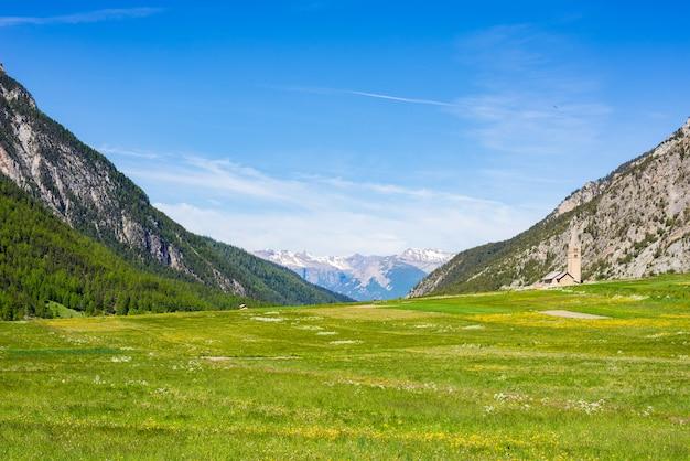 Verão nos alpes. prado alpino de florescência e floresta verde luxúria Foto Premium